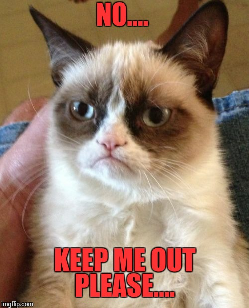 Grumpy Cat Meme | NO.... KEEP ME OUT PLEASE.... | image tagged in memes,grumpy cat | made w/ Imgflip meme maker