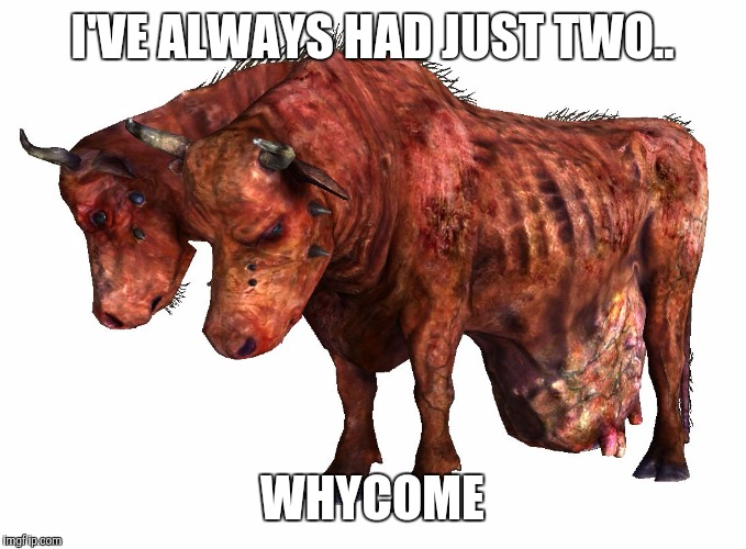 cowses | I'VE ALWAYS HAD JUST TWO.. WHYCOME | image tagged in cowses | made w/ Imgflip meme maker