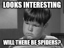 LOOKS INTERESTING WILL THERE BE SPIDERS? | made w/ Imgflip meme maker