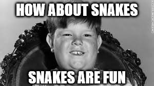 HOW ABOUT SNAKES SNAKES ARE FUN | made w/ Imgflip meme maker