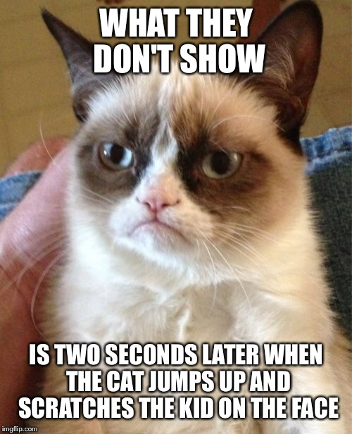 Grumpy Cat Meme | WHAT THEY DON'T SHOW IS TWO SECONDS LATER WHEN THE CAT JUMPS UP AND SCRATCHES THE KID ON THE FACE | image tagged in memes,grumpy cat | made w/ Imgflip meme maker
