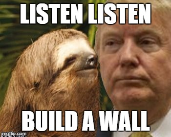 Political advice sloth | LISTEN LISTEN BUILD A WALL | image tagged in political advice sloth | made w/ Imgflip meme maker