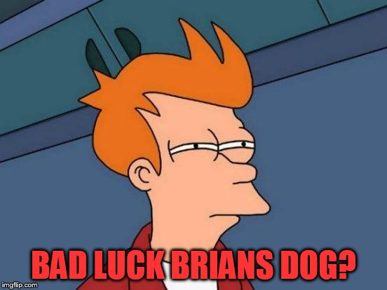 Futurama Fry Meme | BAD LUCK BRIANS DOG? | image tagged in memes,futurama fry | made w/ Imgflip meme maker