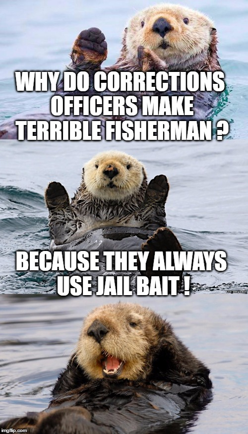 WHY DO CORRECTIONS OFFICERS MAKE TERRIBLE FISHERMAN ? BECAUSE THEY ALWAYS USE JAIL BAIT ! | made w/ Imgflip meme maker
