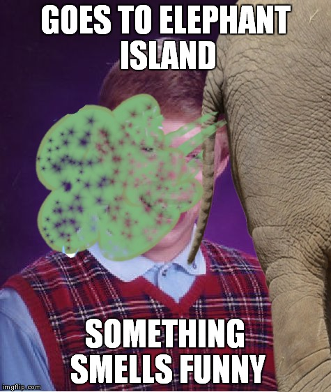 GOES TO ELEPHANT ISLAND SOMETHING SMELLS FUNNY | made w/ Imgflip meme maker