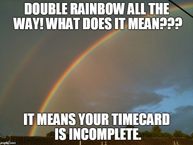 DOUBLE RAINBOW ALL THE WAY! WHAT DOES IT MEAN??? IT MEANS YOUR TIMECARD IS INCOMPLETE. | image tagged in double rainbow | made w/ Imgflip meme maker