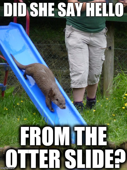 DID SHE SAY HELLO FROM THE OTTER SLIDE? | made w/ Imgflip meme maker