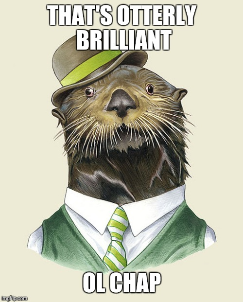 THAT'S OTTERLY BRILLIANT OL CHAP | made w/ Imgflip meme maker