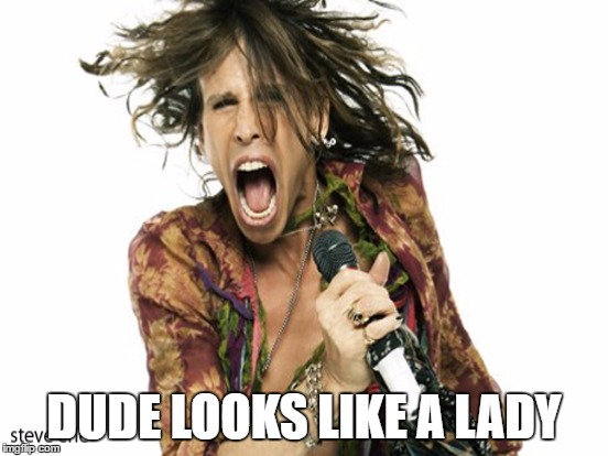 DUDE LOOKS LIKE A LADY | made w/ Imgflip meme maker