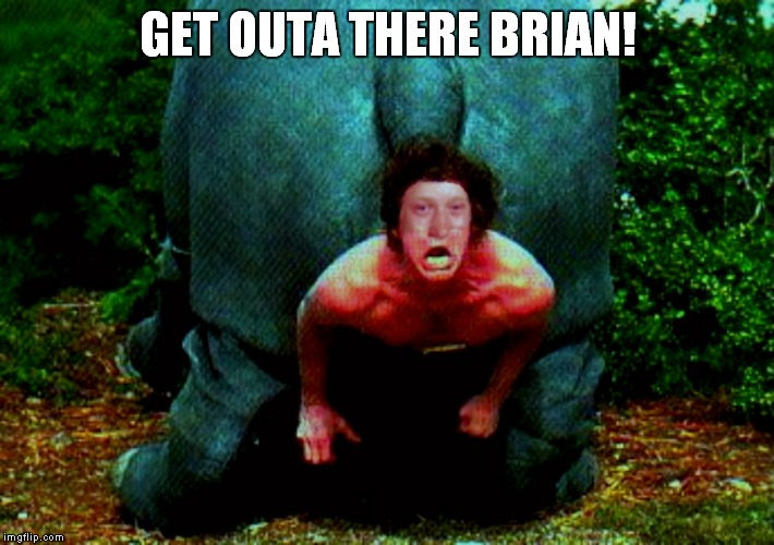 GET OUTA THERE BRIAN! | made w/ Imgflip meme maker
