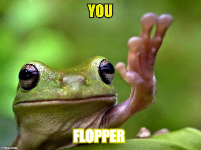 YOU FLOPPER | made w/ Imgflip meme maker