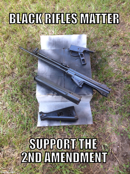 BLACK RIFLES MATTER; SUPPORT THE 2ND AMENDMENT | image tagged in black rifles,second amendment support,firearms,texas | made w/ Imgflip meme maker