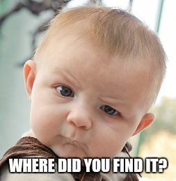 Skeptical Baby Meme | WHERE DID YOU FIND IT? | image tagged in memes,skeptical baby | made w/ Imgflip meme maker