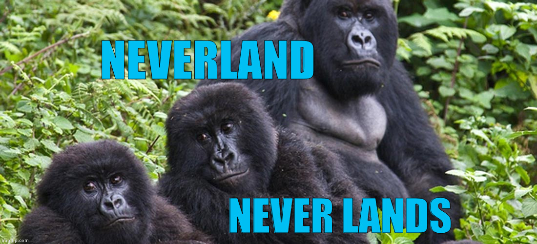 NEVERLAND NEVER LANDS | made w/ Imgflip meme maker