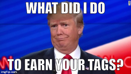 Trump Wut | WHAT DID I DO TO EARN YOUR TAGS? | image tagged in trump wut | made w/ Imgflip meme maker