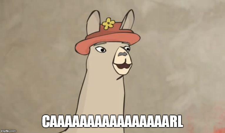 Llamas With Hats Imgflip