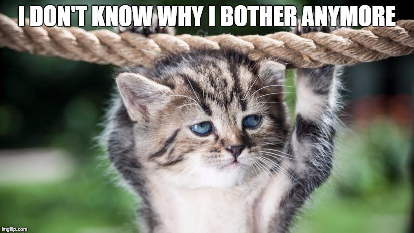 Hang In There - Sloth Buddies meme on Memegen
