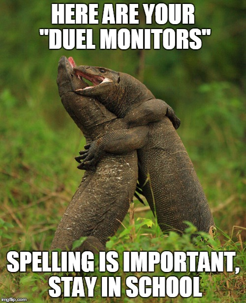 "Monitor Request | HERE ARE YOUR ""DUEL MONITORS"" SPELLING IS IMPORTANT, STAY IN SCHOOL 