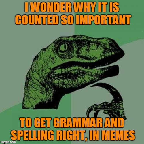 Philosoraptor Meme | I WONDER WHY IT IS COUNTED SO IMPORTANT TO GET GRAMMAR AND SPELLING RIGHT, IN MEMES | image tagged in memes,philosoraptor | made w/ Imgflip meme maker