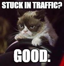 Grumpy Cat Driving A Car