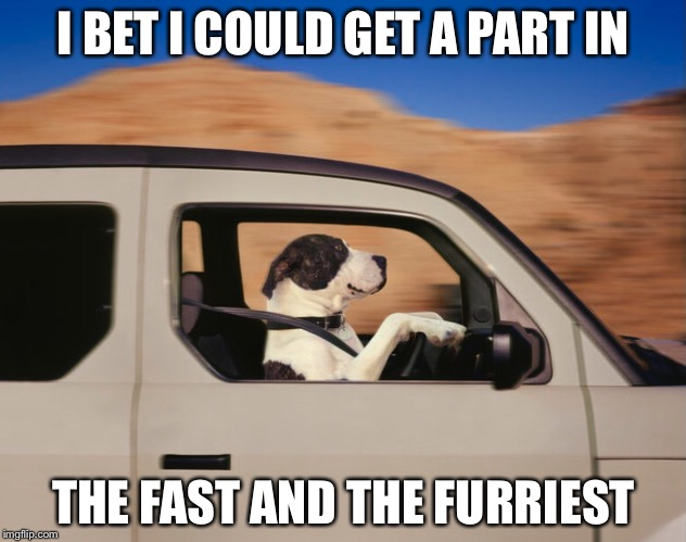 I BET I COULD GET A PART IN THE FAST AND THE FURRIEST | made w/ Imgflip meme maker