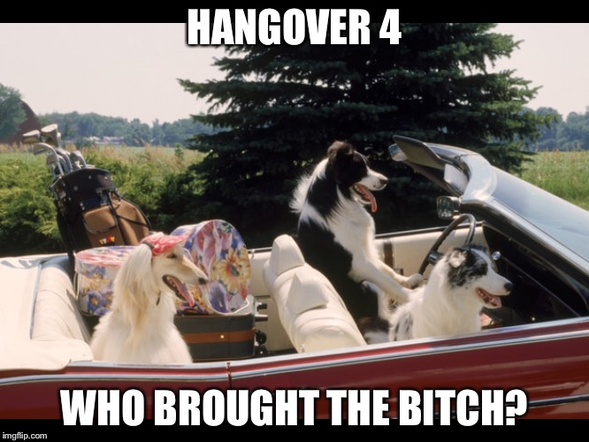 HANGOVER 4 WHO BROUGHT THE B**CH? | made w/ Imgflip meme maker