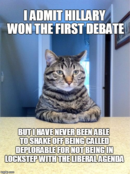 WHEN YOU MAKE IT PERSONAL IT'S HARD TO GET PAST THAT. | I ADMIT HILLARY WON THE FIRST DEBATE BUT I HAVE NEVER BEEN ABLE TO SHAKE OFF BEING CALLED DEPLORABLE FOR NOT BEING IN LOCKSTEP WITH THE LIBE | image tagged in memes,election 2016,hillary clinton 2016,trump 2016,basket of deplorables | made w/ Imgflip meme maker