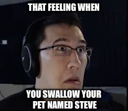 Had to do it. My pet named Steve is now officially a meme. - Imgflip
