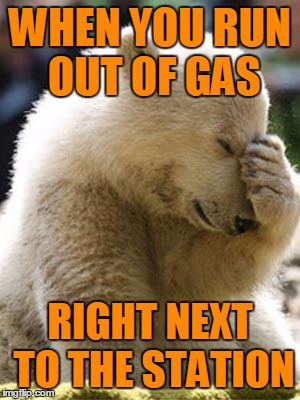 Facepalm Bear |  WHEN YOU RUN OUT OF GAS; RIGHT NEXT TO THE STATION | image tagged in memes,facepalm bear,funny,gas,walkofshame,runningonfumes | made w/ Imgflip meme maker