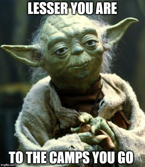 Star Wars Yoda Meme | LESSER YOU ARE TO THE CAMPS YOU GO | image tagged in memes,star wars yoda | made w/ Imgflip meme maker