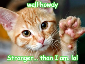 Howdy stranger | well howdy Stranger... than I am. lol | image tagged in howdy,stranger,kitten,cute | made w/ Imgflip meme maker
