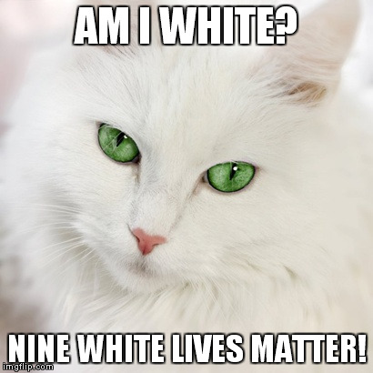 White cat | AM I WHITE? NINE WHITE LIVES MATTER! | image tagged in white cat | made w/ Imgflip meme maker