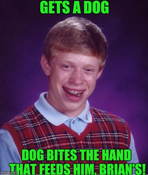 Bad Luck Brian Meme | GETS A DOG DOG BITES THE HAND THAT FEEDS HIM, BRIAN'S! | image tagged in memes,bad luck brian | made w/ Imgflip meme maker