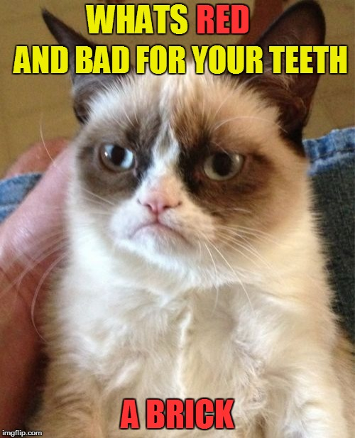 Grumpy Cat Meme | RED A BRICK WHATS AND BAD FOR YOUR TEETH | image tagged in memes,grumpy cat,funny meme,bad jokes,bricks,teeth | made w/ Imgflip meme maker