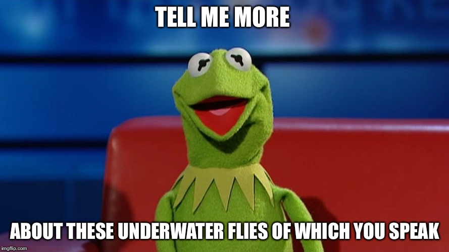 TELL ME MORE ABOUT THESE UNDERWATER FLIES OF WHICH YOU SPEAK | made w/ Imgflip meme maker