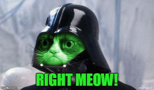 Grumpy RayVader | RIGHT MEOW! | image tagged in grumpy rayvader | made w/ Imgflip meme maker