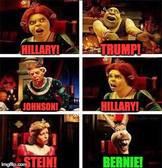 Shrek | HILLARY! TRUMP! JOHNSON! HILLARY! STEIN! BERNIE! | image tagged in shrek | made w/ Imgflip meme maker