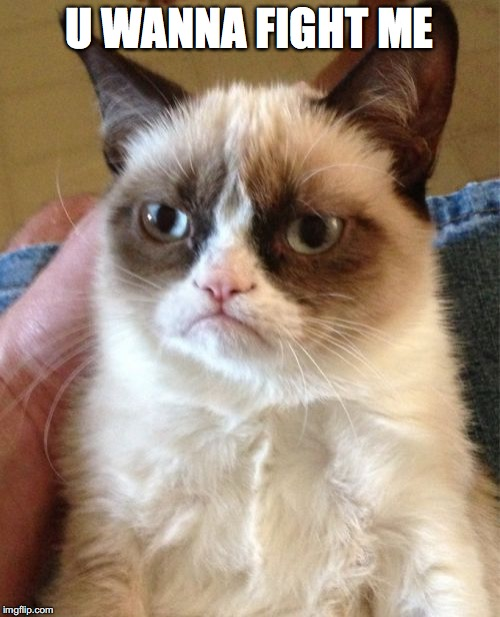 Grumpy Cat Meme | U WANNA FIGHT ME | image tagged in memes,grumpy cat | made w/ Imgflip meme maker