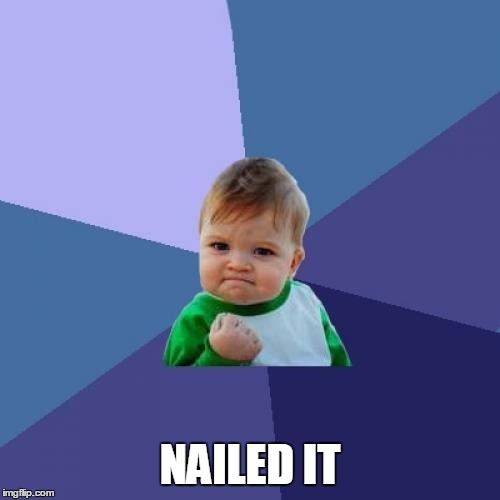 Success Kid Meme | NAILED IT | image tagged in memes,success kid | made w/ Imgflip meme maker