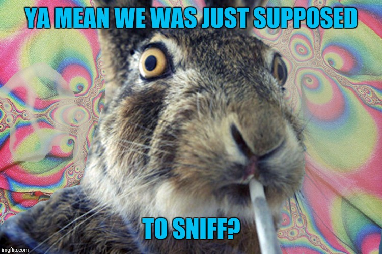 YA MEAN WE WAS JUST SUPPOSED TO SNIFF? | made w/ Imgflip meme maker