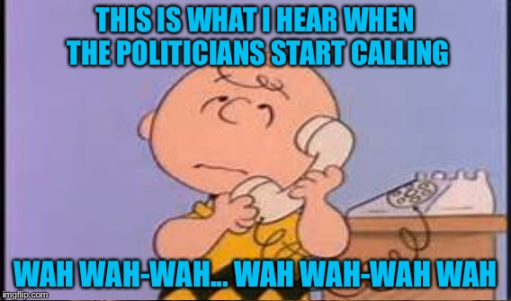 We need your vote Charlie brown | THIS IS WHAT I HEAR WHEN THE POLITICIANS START CALLING WAH WAH-WAH... WAH WAH-WAH WAH | image tagged in memes,charlie brown | made w/ Imgflip meme maker