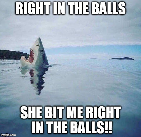 shark_head_out_of_water |  RIGHT IN THE BALLS; SHE BIT ME RIGHT IN THE BALLS!! | image tagged in right in the balls,ouch | made w/ Imgflip meme maker