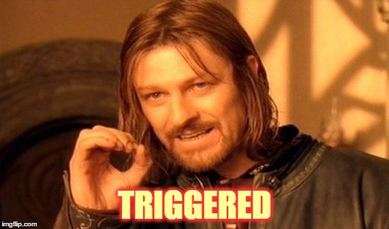 One Does Not Simply Meme | TRIGGERED | image tagged in memes,one does not simply | made w/ Imgflip meme maker