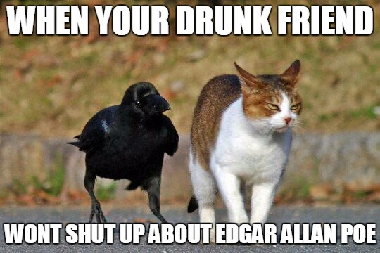 Stole this from Twitter https://twitter.com/HorribleSanity | WHEN YOUR DRUNK FRIEND WONT SHUT UP ABOUT EDGAR ALLAN POE | image tagged in crow cat friends,edgar allan poe,twitter,memes | made w/ Imgflip meme maker