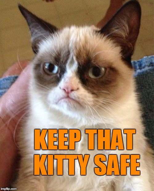 Grumpy Cat Meme | KEEP THAT KITTY SAFE | image tagged in memes,grumpy cat | made w/ Imgflip meme maker
