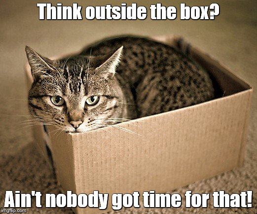 cat in a box imgflip. Black Bedroom Furniture Sets. Home Design Ideas