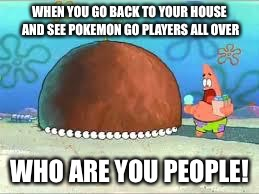WHO ARE YOU PEOPLE? |  WHEN YOU GO BACK TO YOUR HOUSE AND SEE POKEMON GO PLAYERS ALL OVER; WHO ARE YOU PEOPLE! | image tagged in who are you people | made w/ Imgflip meme maker