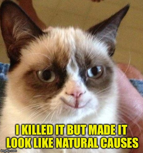 grumpy smile | I KILLED IT BUT MADE IT LOOK LIKE NATURAL CAUSES | image tagged in grumpy smile | made w/ Imgflip meme maker
