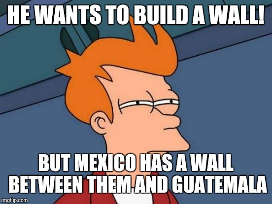 Futurama Fry Meme | HE WANTS TO BUILD A WALL! BUT MEXICO HAS A WALL BETWEEN THEM AND GUATEMALA | image tagged in memes,futurama fry | made w/ Imgflip meme maker