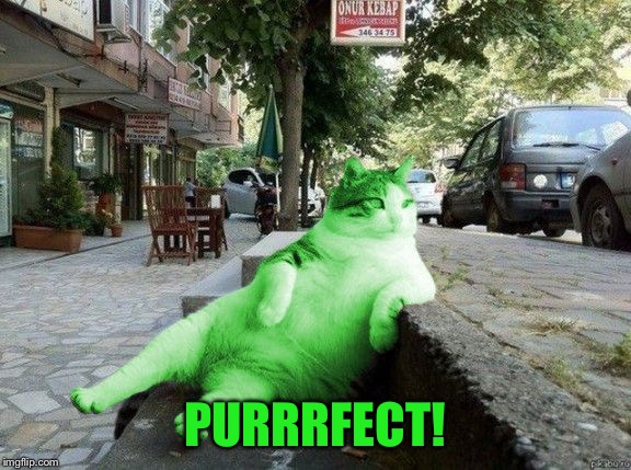 RayCat relaxing | PURRRFECT! | image tagged in raycat relaxing | made w/ Imgflip meme maker